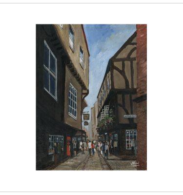 Shambles, York by John Bird