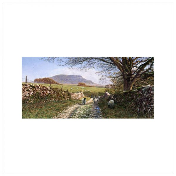 Penyghent From Horton Scar Lane By Keith Melling