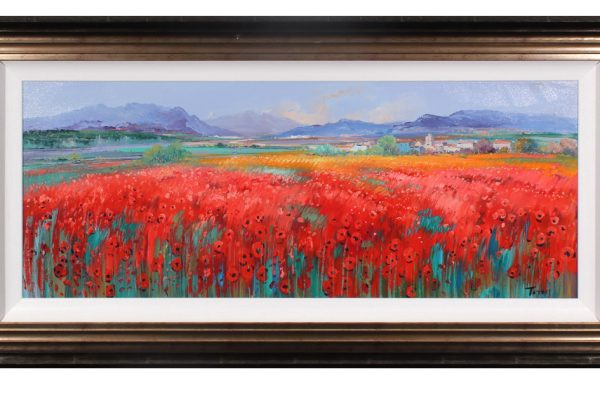 154MT009 - Poppies in the Valley