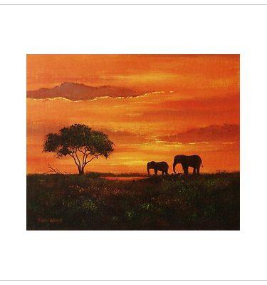 Elephants by John Wood