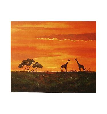 Giraffes by John Wood