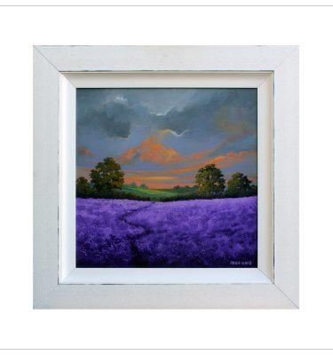 Lavender Fields by John Wood