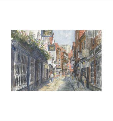 York - The shambles by John Bird
