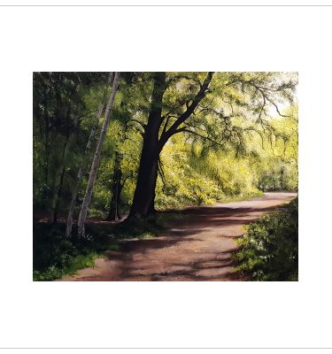 Sunlit Path Clumber by Margaret Jarvis
