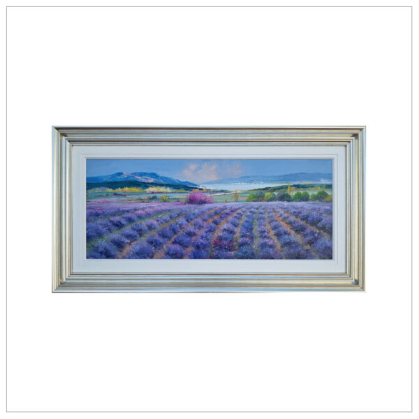 Lavender Bay by Miguel Torres